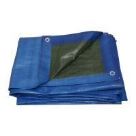 covering tarp,blue/green, with metal eyelets, 6 x 10 m, 150 g / m2, profi
