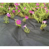 black fabric, nonwoven, permeable, roles, 0.9 x 10 m, 50 g / m2